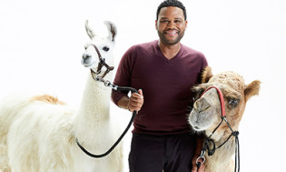 Animal Nation with Anthony Anderson Season 1