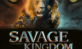 Savage Kingdom Season 2