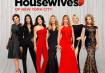 The Real Housewives of the New York City Season 9