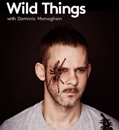 Wild Things Season 2_Release_Date