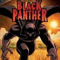 black-panther-20101209104440660