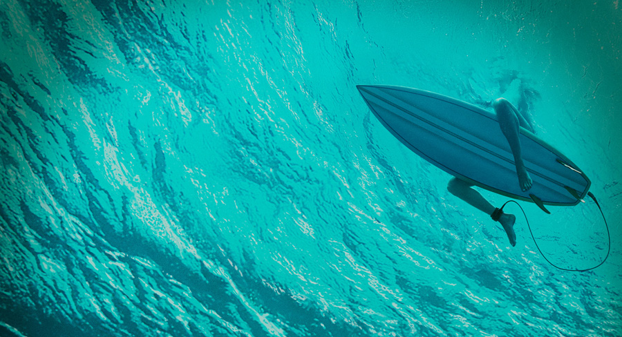 The Shallows Release Date