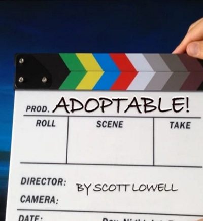 Adoptable Season 1 Release Date