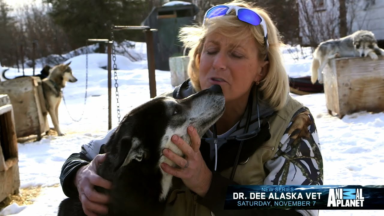 Doctor Dee: Alaska Vet Season 3 1
