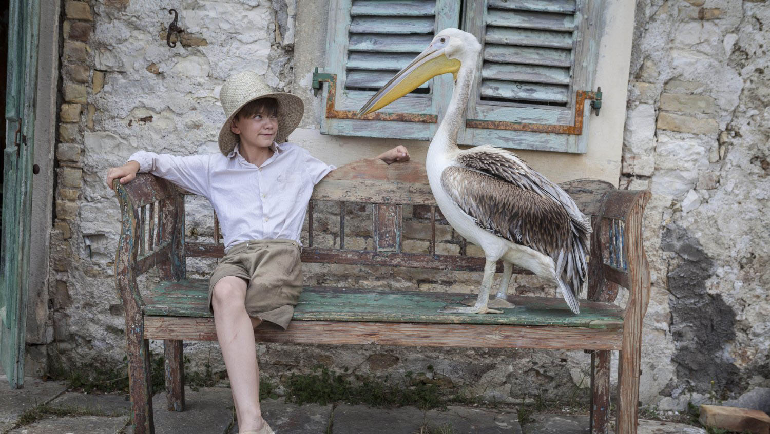 The Durrells Season 2 3