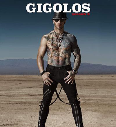 Gigolos season 7Release Date