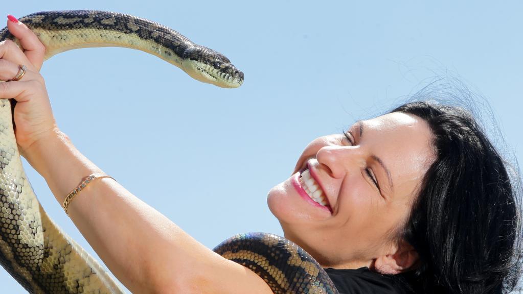 Snake Boss Season 3 3