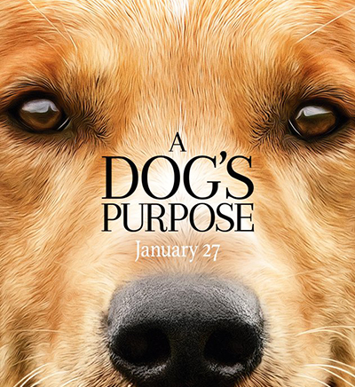 A Dog`s Purpose Release Date