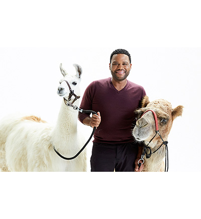 Animal Nation with Anthony Anderson Season 1 Release Date