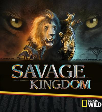 Savage Kingdom Season 2 Release Date