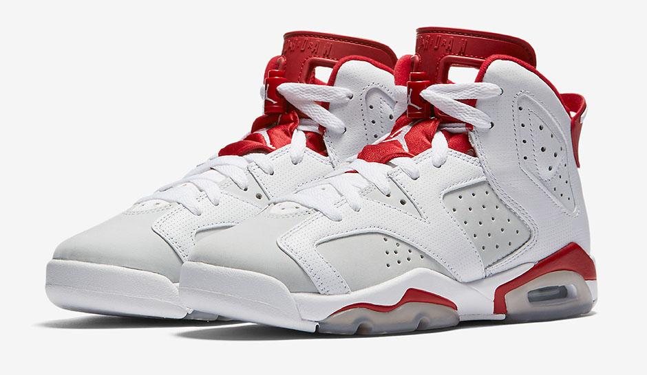 The Air Jordan 6 Alternate 1